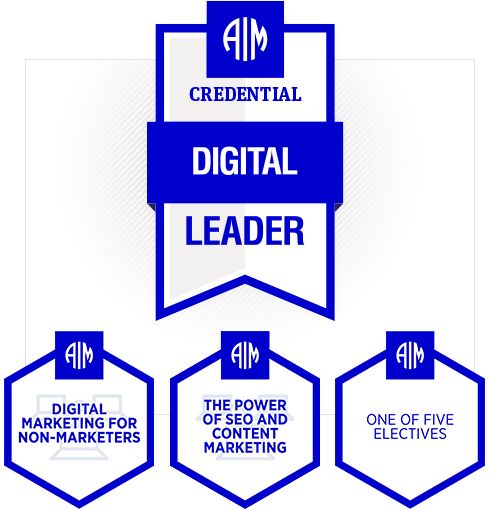 AIM Digital Leader