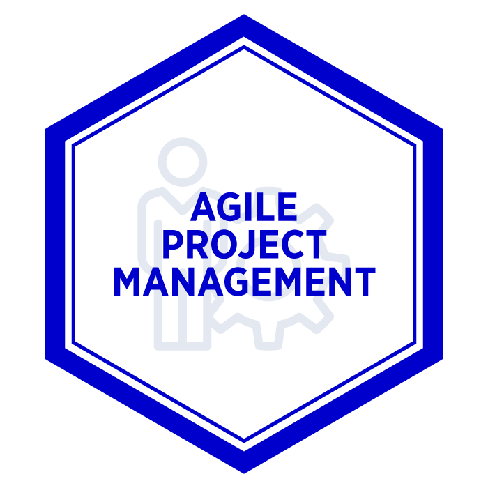AIM Agile Project Management Badge