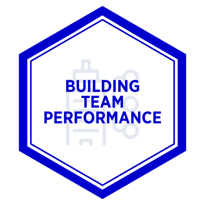 AIM Building Team Performance Badge