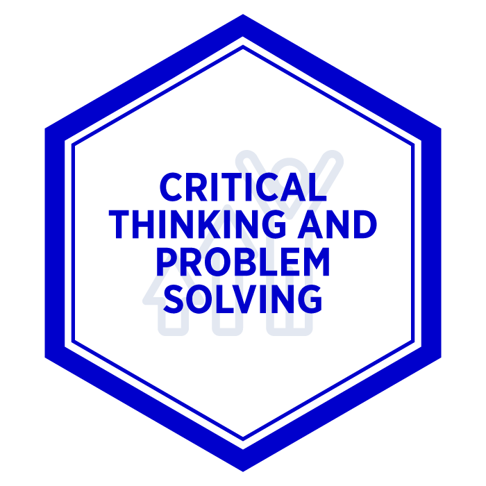 AIM Critical Thinking and Problem Solving Badge