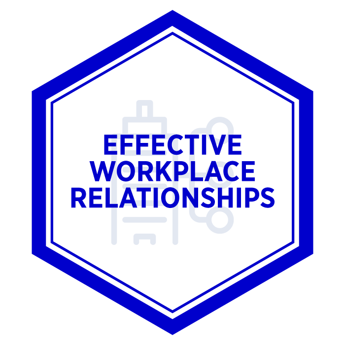 AIM Effective Workplace Relationships Badge