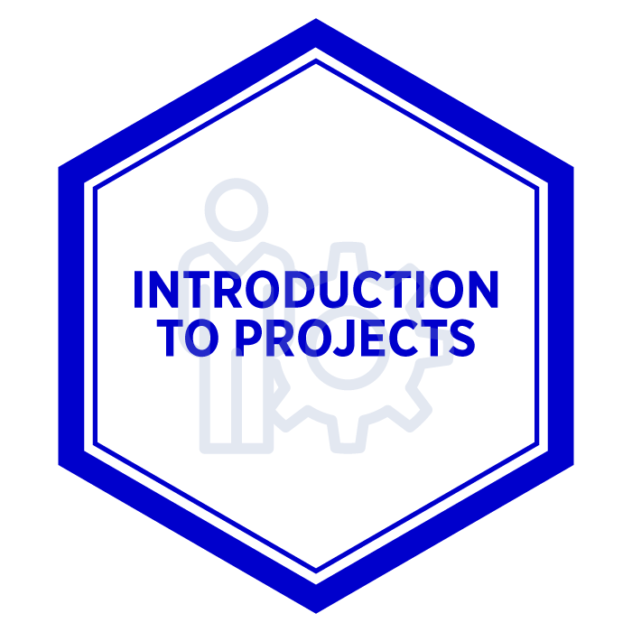 AIM Introduction to Projects Badge