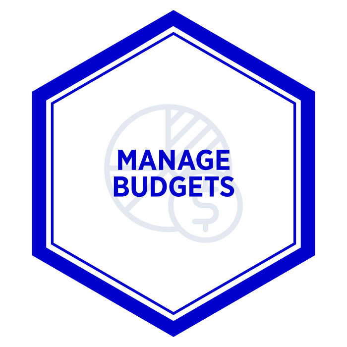 AIM Manage Budgets Badge