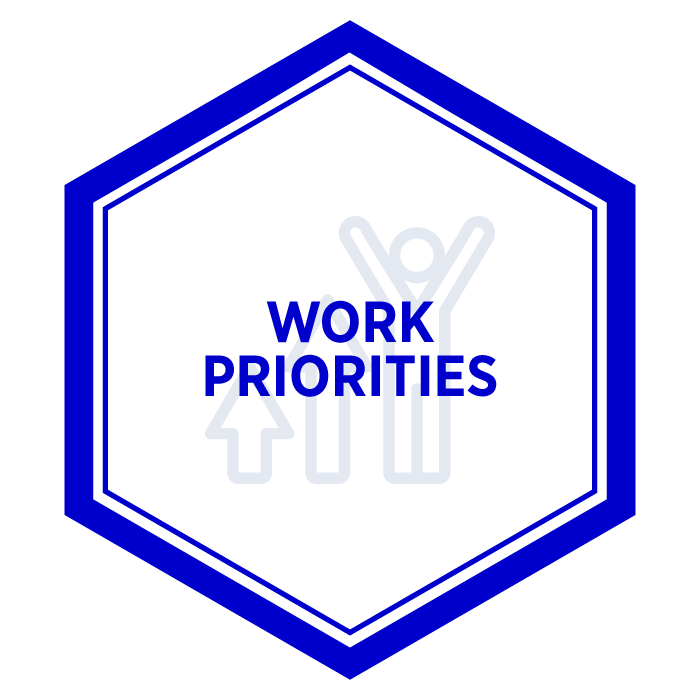 AIM Work Priorities Badge
