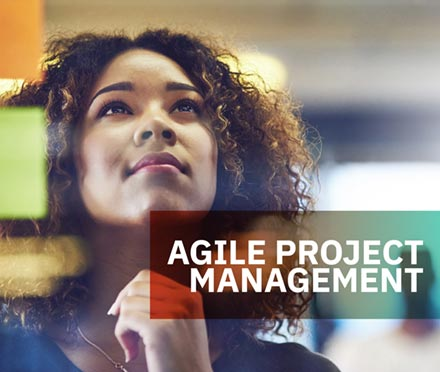 Agile Project Management Short Course