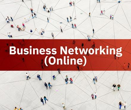 Business Networking (Online)